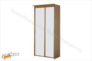 Орматек - Шкаф 2-х дверный - купе Эконом (глубина 600мм) с 2 зеркалами