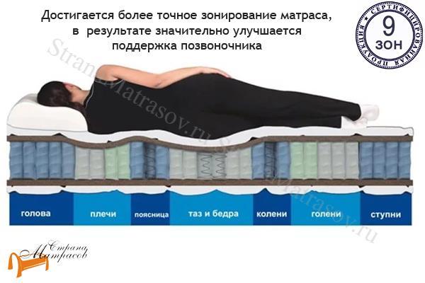 Райтон Ортопедический матрас OrtoBio M (Medium)  EVS 760 9-zone , 9 зон у матраса, латекс, независимый пружинный блок, лен