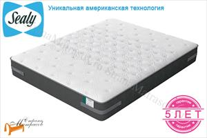Sealy (США) - Матрас Sealy Posture Plus Plush