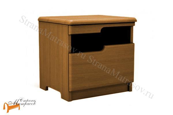 DreamLine Тумба Бельфор , деревянная, бук, ясень, коричневый, белый, черный, слоновая кость