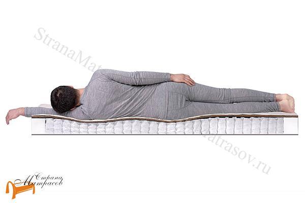 DreamLine Ортопедический матрас Balance Country TFK 550 , темовойлок, независимый пружинный блок, хлопковый жаккард